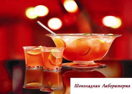 Пунш со смородиной, клюквой, водкой и розовым вином